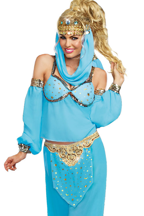 Costumes - Dreamgirl 4 Pce Genie Costume