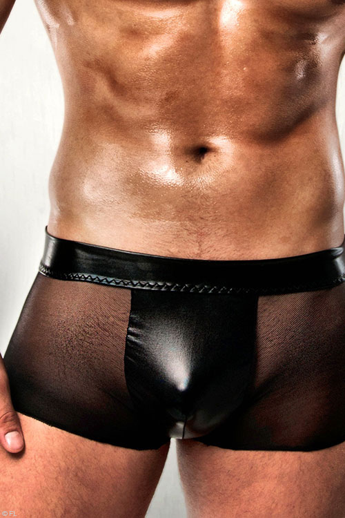 Lingerie - Passion Athletic Sheer Boxer