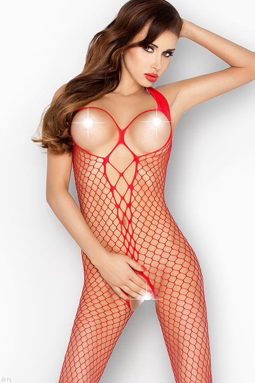 Lingerie - Passion Erotic Fencenet Bodystocking